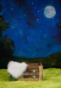 moonbackdropfb